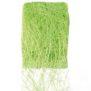 ruban et tissu fleuriste ruban abaca couleur vert. Black Bedroom Furniture Sets. Home Design Ideas