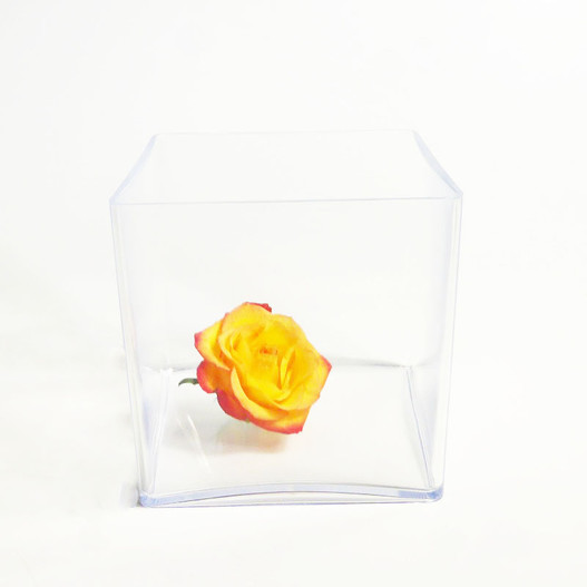 vase pl xi cadre v g tal vase cube plexiglas cristal 15 x 15 cm mat riel d 39 art floral et. Black Bedroom Furniture Sets. Home Design Ideas