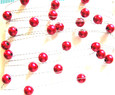 Perle sur fil OASIS Argent coloris Rouge