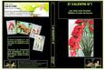 DVD cours d'art floral N°20