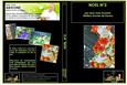 DVD cours d'art floral N°19