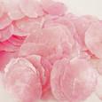Ecaille de nacre coloris Rose