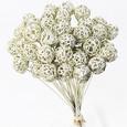 Boule d'osier sur tige Champagne glitter par 5 pièces