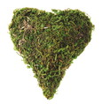 Coeur bombé en mousse naturelle séchée 7.5 cm