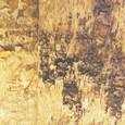 Plaque d'écorce de Bouleau séché 25 cm