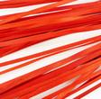 Ruban de bois petite largeur couleur Rouge