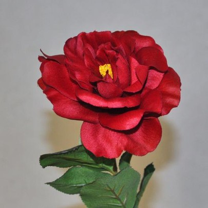 Rose Anglaise Rouge