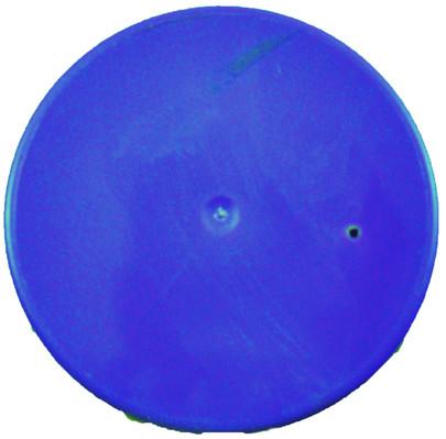 Bombe de peinture florale Oasis Bleu de France