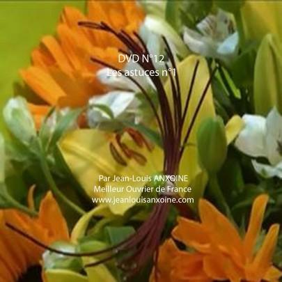 DVD cours d'art floral N°12 les astuces dans l'art floral tome 1