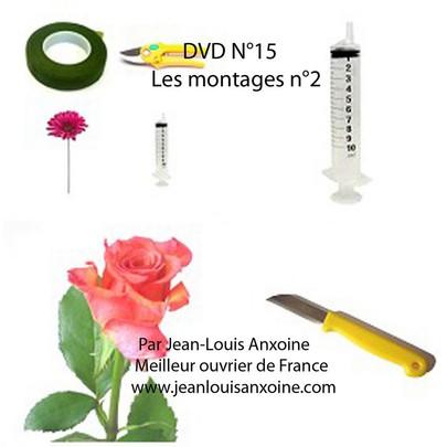 DVD cours d'art floral N°15 Les montages tome 2