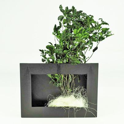 Cadre végétal a garnir coloris NOIR GM