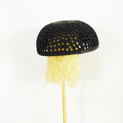 Forme champignon en luffa Noir sur tige