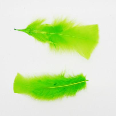 Plume colorée Vert anis