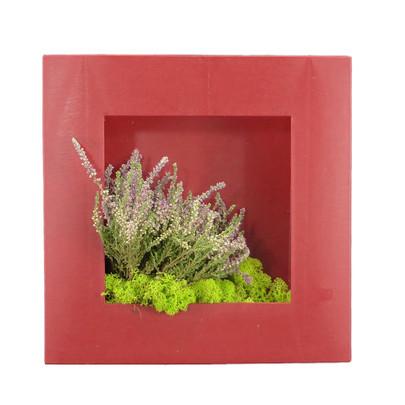 Cadre végétal à garnir coloris Rouge MM