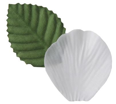 Pétale de rose et feuille coloris Blanc