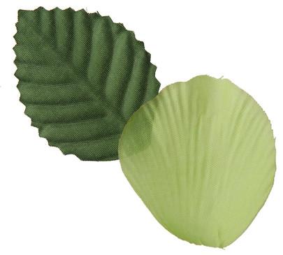Pétale de rose et feuille coloris Vert anis