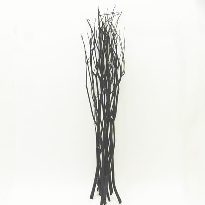 Mitsumata Noir botte
