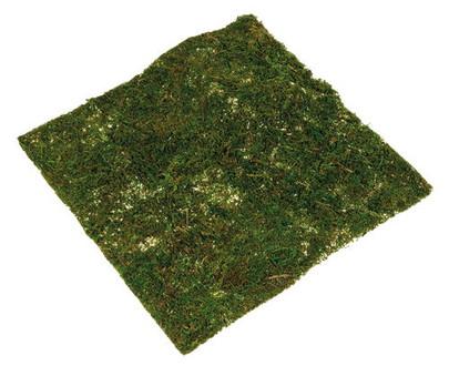 Vegetaux seches et artificiels tapis de mousse naturelle s ch e mat ri - Tapis matiere naturelle ...