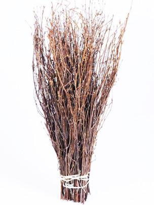 Botte de 50 branches de bouleau NATUREL