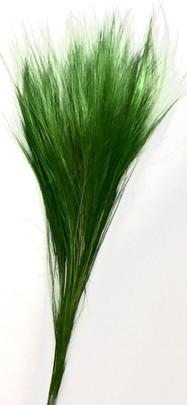 Barba Stabilisé Vert