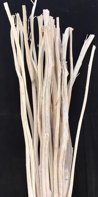 Amaranthus Tige par 5 Branches