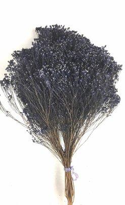 Balai Bloom Violet