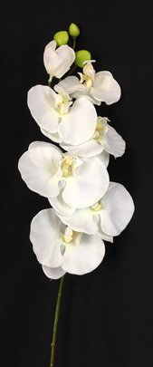 Orchidée phalaenopsis 6 fleurs Blanche Artificielle