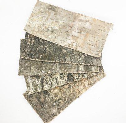 ECORCES DE BOIS rectangle 15 x 10 cm par 5.
