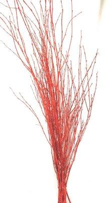 Botte Branches de Bouleau ROUGE Pailletées de 12 tiges environ.