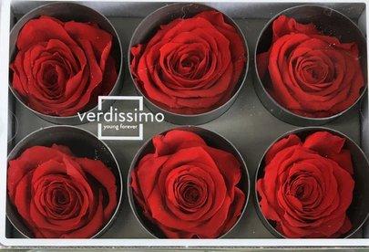 Rose stabilisée couleur Rouge par 1 pièce