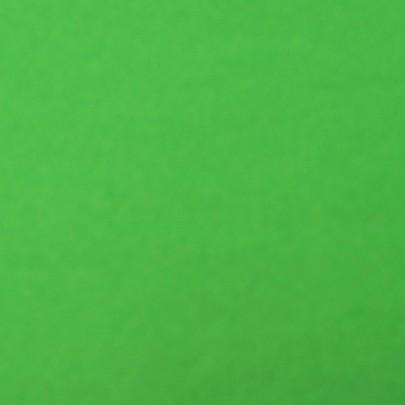 Papier de soie vert sapin 24 feuilles